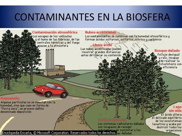 contaminacion de la biosfera pdf