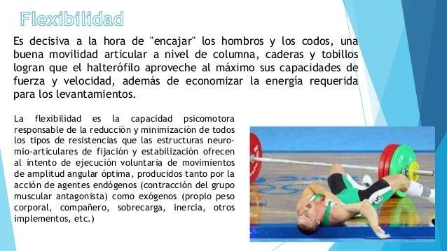 caracterizacion de condiciones de flexibilidad muscular