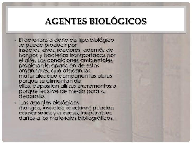 condiciones ambientales ideales para la aparición de hongos