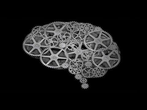 desarrolla tu cerebro pdf gratis