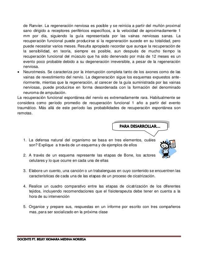 12 docente ft belky xiomara medina noriega pdf