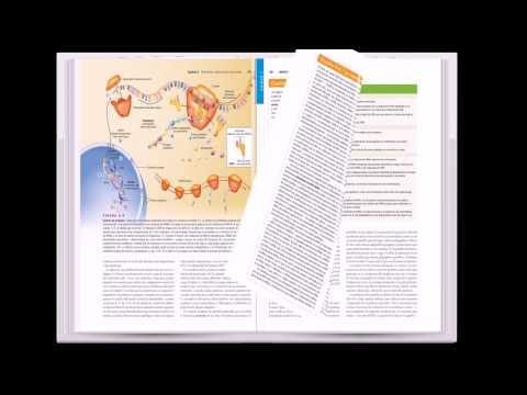 anatomia y fisiologia tortora pdf descargar