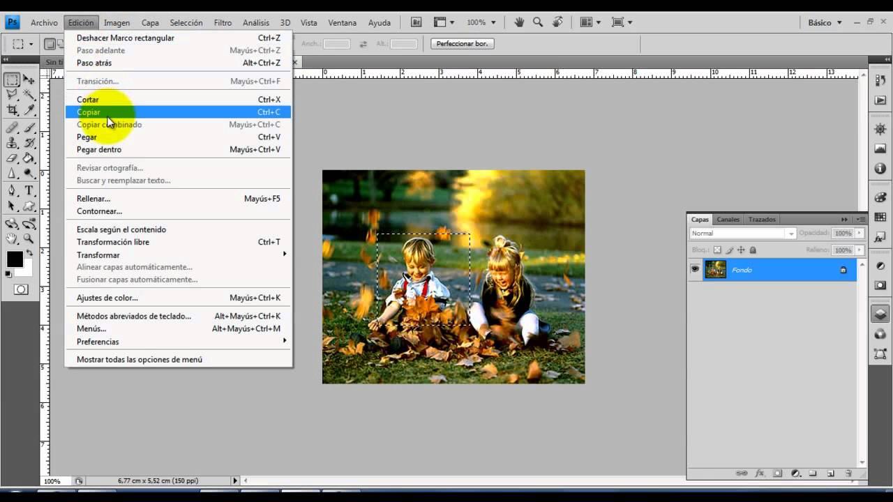 copiar y pegar imagen de pdf
