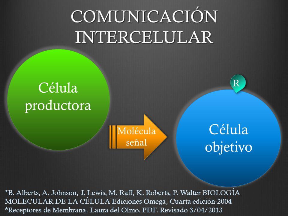 alberts biologia molecular de la celula 6 edicion pdf