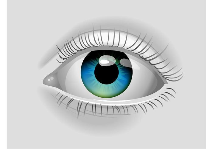 cuidado de ojos mutual pdf